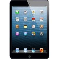iPad Mini (1st Generation) Repair